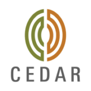 cedar management consulting